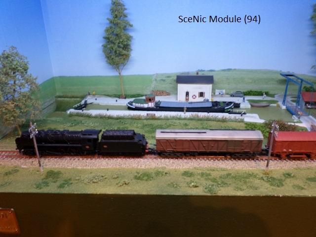 SceNic Module_1